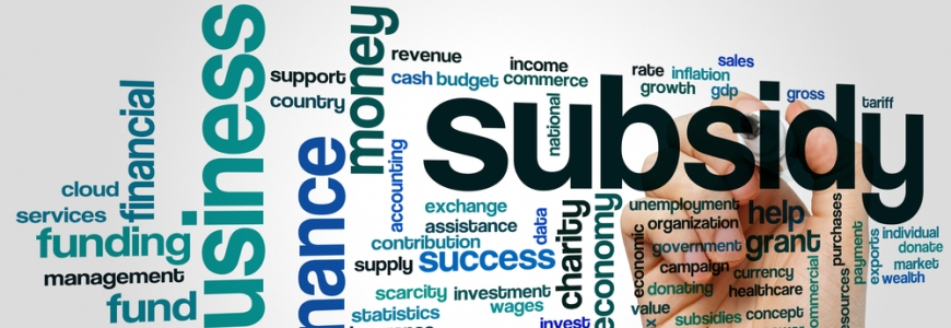 Image for Updates to Wage Subsidy Programs blog