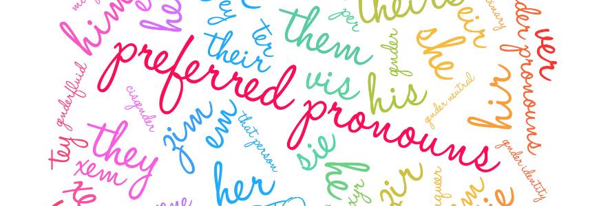 Preferred Pronouns on a white background.